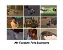 Pets snapshots