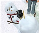 Snowman masscare