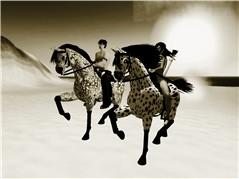 raceing horses bw