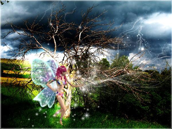 Fairy's anger