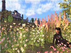 little spring in Rhizome - Kei Beatty