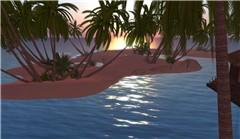 Surfline Aloha_3