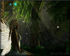 Fairy Pic2