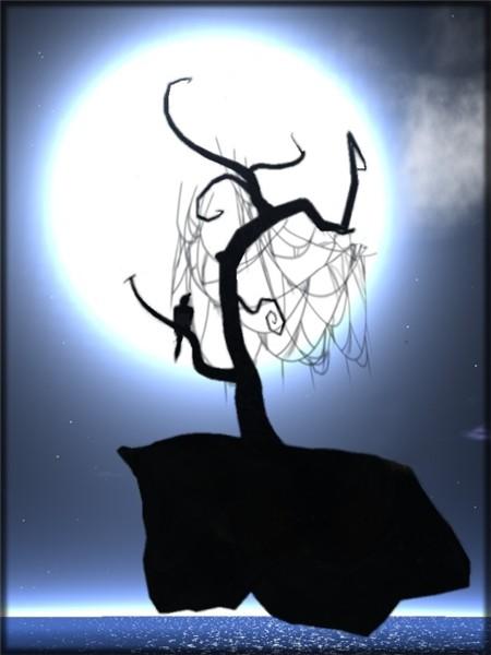 a moonbird