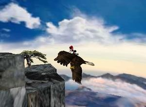 Bald eagles are going to be extinct lets save them so they can fly us to places.