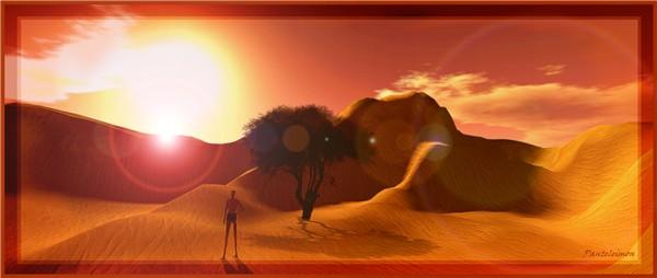 AFRICAN SUN