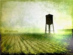 A field is a field, is a field...