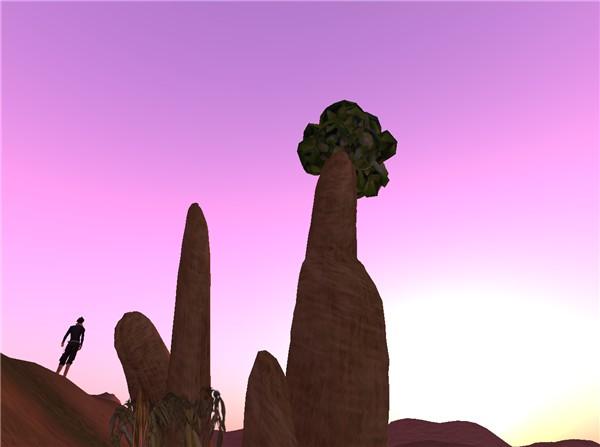 Baobab's Dream