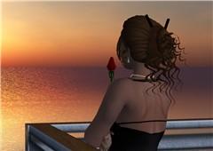 A Rose at Sea