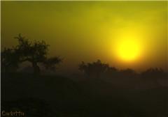 September Haze