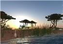 Virtual Africa - Alanagh Recreant