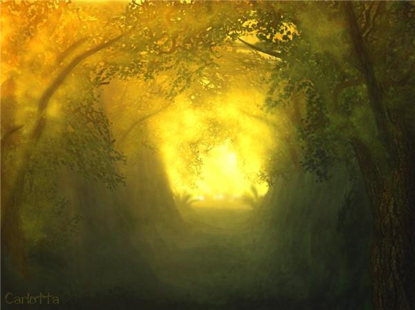 Through the Hollow Way