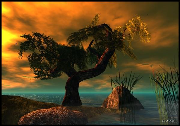 Sunset at Lost World