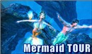 Mermaid TOUR!!!!