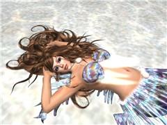 winds_008