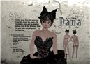 Dana nights theme poster