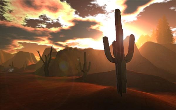 Arizona_015