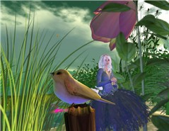 Un jardin pour Alice
