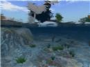 Carolina sim underwater