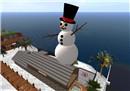 Our Snowman - Draygone Llewellyn