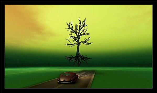 """""""Beneath the tree that died"""""""