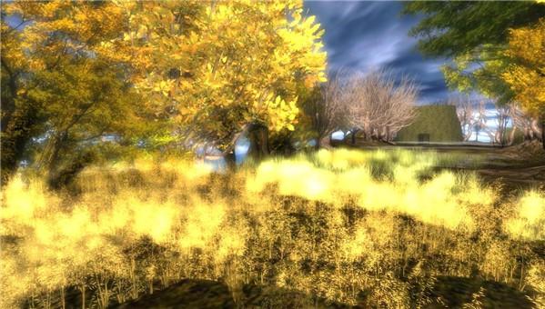 harvest meadow - watcher Castaignede