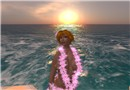 Hula girl and sun