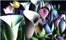 Fallingwater Flowers - Balduin Aabye