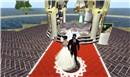 the red carpet walk