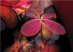 Flowerful_008