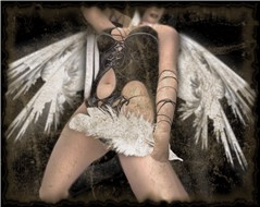 Angel Feather