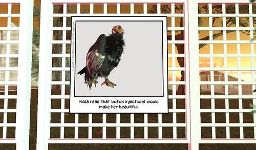Snougle: California Condor