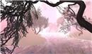 KX Misty Hollow Tree and Palo Verde Tree - Ravenelle Zugzwang