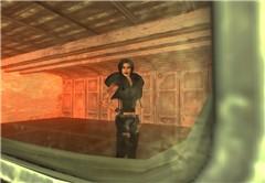 Vita nel Vault