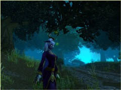 My priest in Duskwood