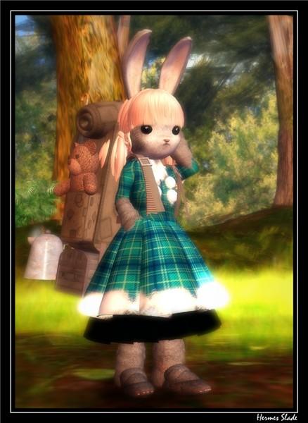 383 Kawaii's dreams  02