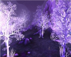 Crystalsong woods
