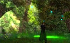 At Silvanus Forest