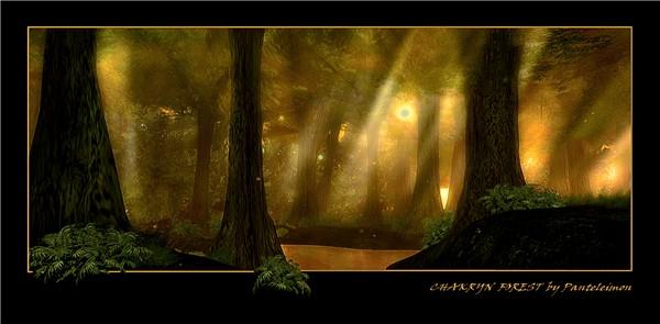 CHAKRYN FOREST By Panteleimon ( redux )