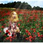 Flower among flowers