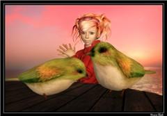 407 A couple of Birds