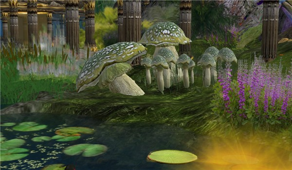 The most awesome mushrooms of the grid - Koinup Burt