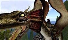 The jokaydia Dragon!