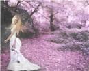 Forever Spring...