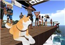 Surfdoggie - Socks Clawtooth