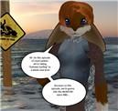 """""""Stunt Junkies"""" on Second Life!"""