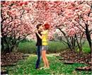 Primavera Romantica Sara
