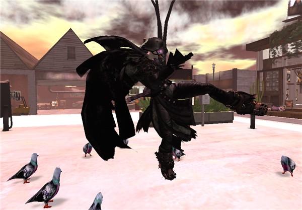 Back off pigeons!
