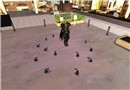 Surrounded and sieged by pigeons!