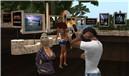 Gathering in Orange Island - Koinup Burt